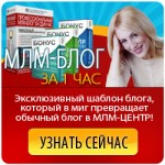 Сделать МЛМ блог за 1 час